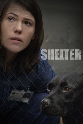 Poster of Shelter