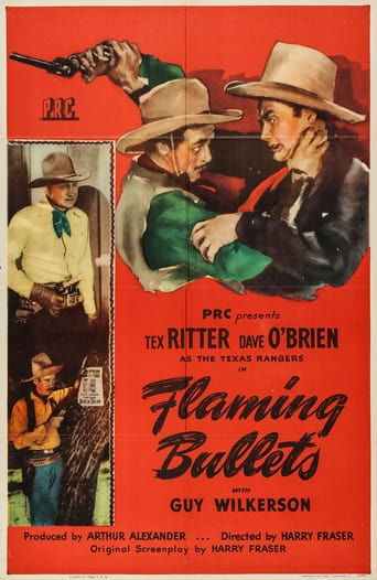 Poster of Flaming Bullets