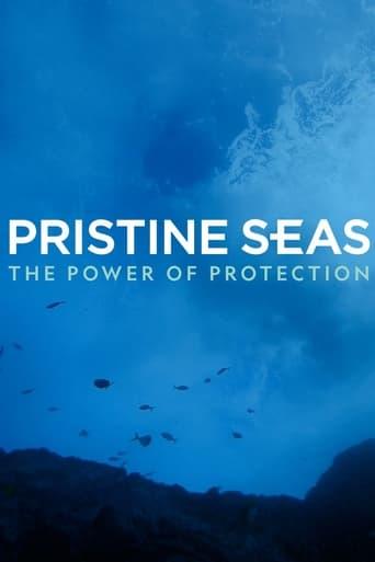 Pristine Seas Project: Zum Schutz der Meere