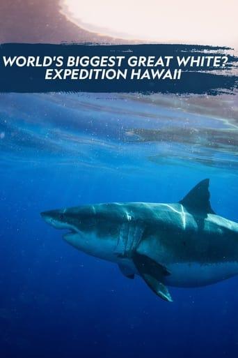 Der größte Weiße Hai? - Expedition Hawaii