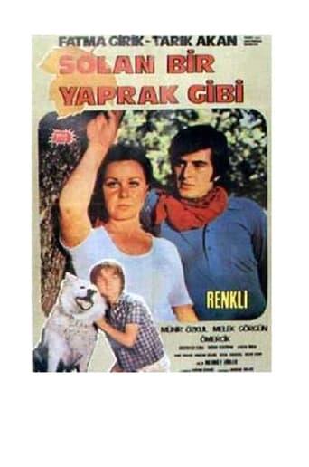 Poster of Solan Bir Yaprak Gibi