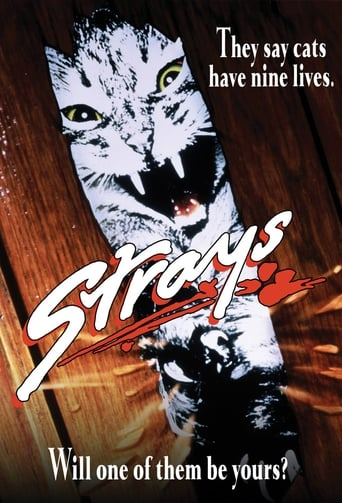 Poster of Strays