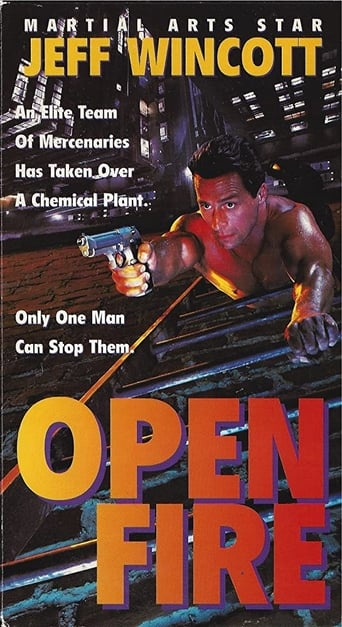 Poster of Open Fire