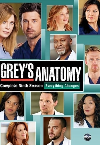 Grei anatomija / Grey's Anatomy (2012) 9 Sezonas LT SUB