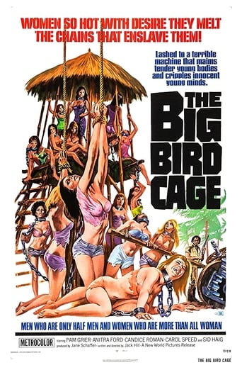 Poster of The Big Bird Cage