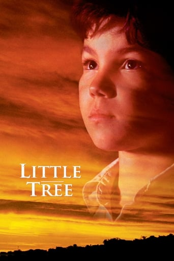 Poster of The Education of Little Tree