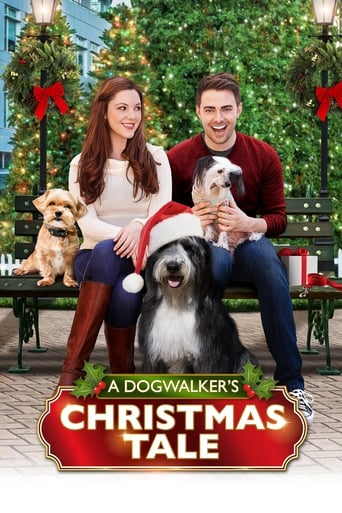 Poster of A Dogwalker's Christmas Tale