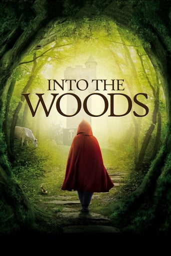 Poster of Into the Woods