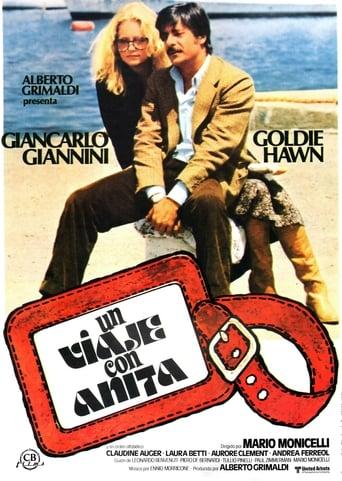 Poster of Un viaje con Anita