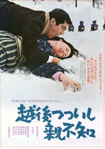 Poster of A Story from Echigo