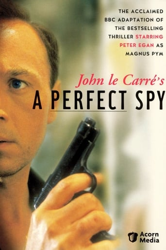 Poster of A Perfect Spy