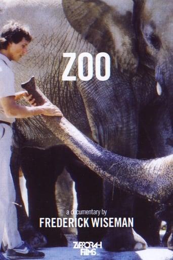 Watch Zoo full movie downlaod openload movies
