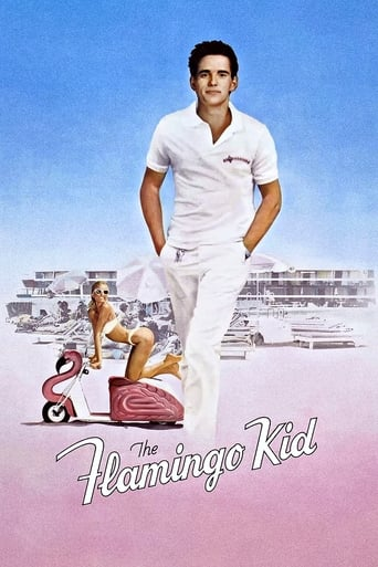 Poster of The Flamingo Kid