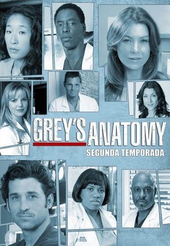 A Anatomia de Grey 2ª Temporada - Poster