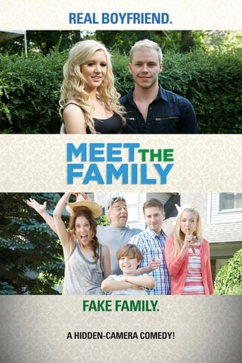 Poster of Meet the Family