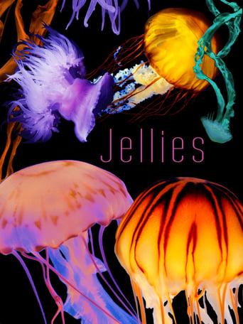 The Art of Nature: Jellies