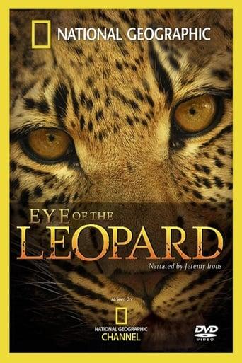 Eye of the Leopard