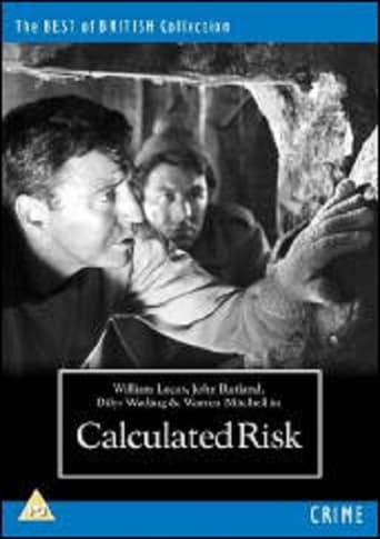 Poster of Calculated Risk