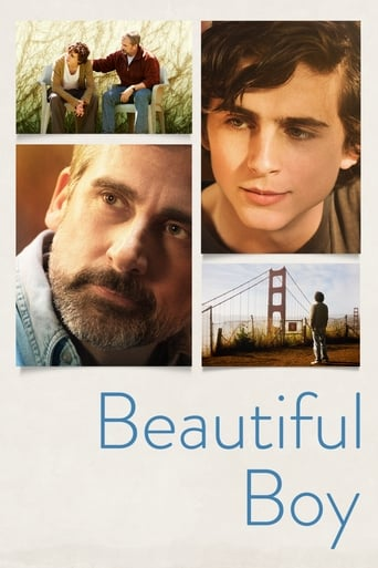Beautiful Boy image