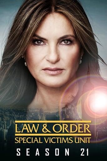 Lei & Ordem Unidade de Vítimas Especiais 21ª Temporada - Poster