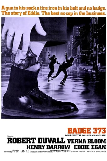 Poster of Badge 373