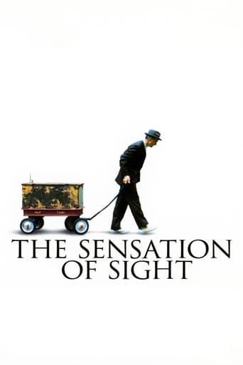 Poster of The Sensation of Sight