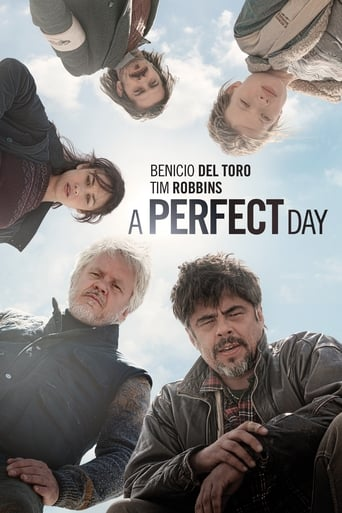 Poster of A Perfect Day