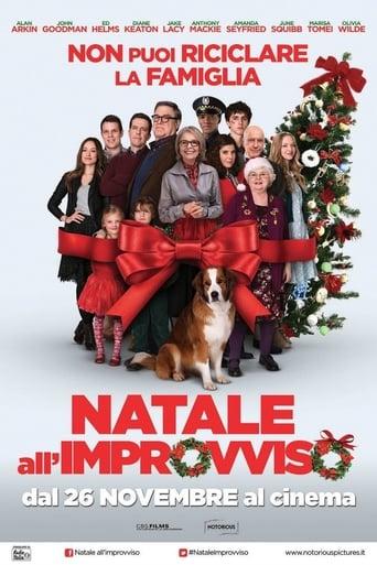 Cartoni animati Natale all'improvviso - Love the Coopers
