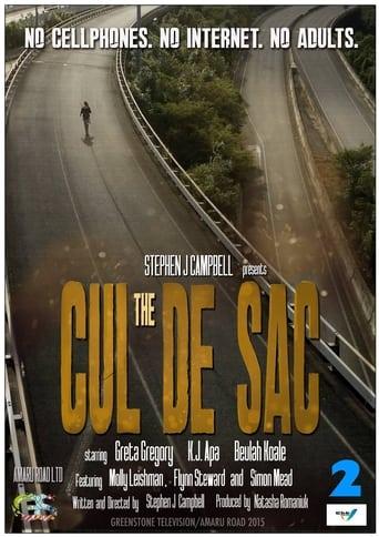 Poster of The Cul de Sac