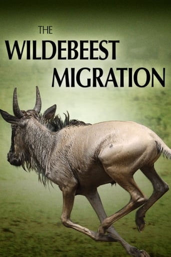 The Wildebeest Migration: Nature's Greatest Journey