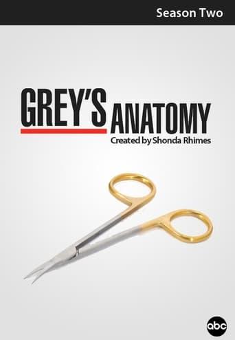 Grei anatomija / Grey's Anatomy (2005) 2 Sezonas