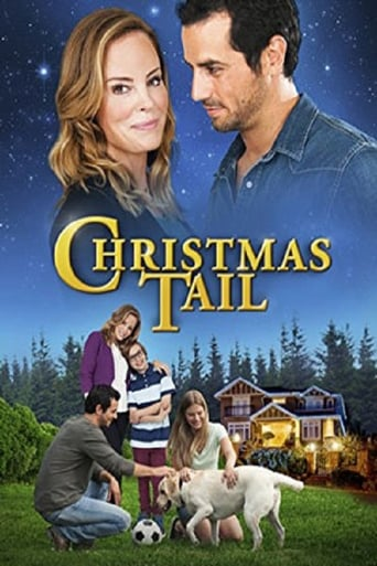 Poster of Christmas Tail