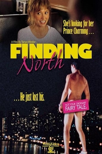 Poster of Finding North