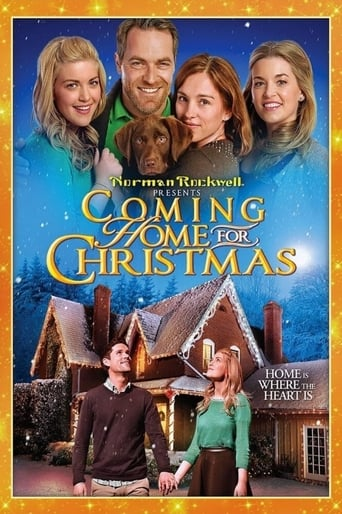 Poster of Vuelta a casa por Navidad
