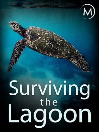 Surviving the Lagoon