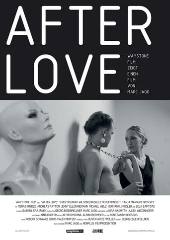 Poster of After Love