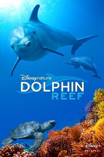 Poster of Delfines, la vida en el arrecife