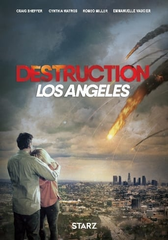 Destruction Los Angeles Poster