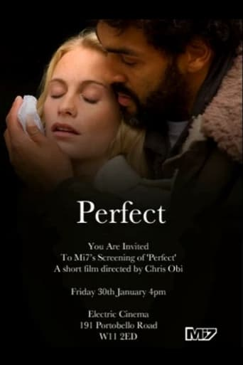 Poster of Perfect
