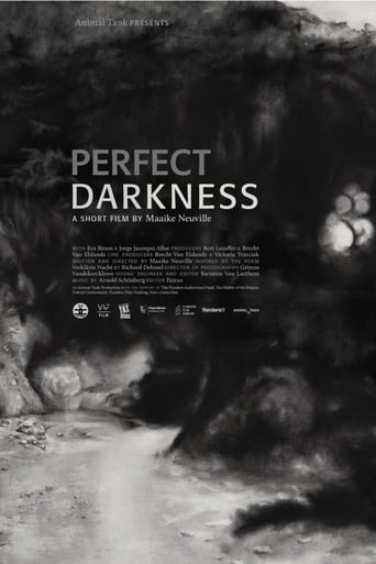 Poster of Perfect Darkness