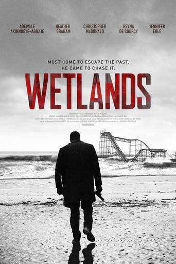 Poster of Wetlands