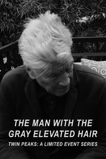 Poster of The Man with the Gray Elevated Hair