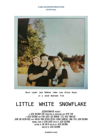 Poster Little White Snowflake