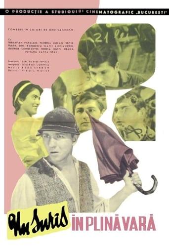 Poster of Un surîs în plină vară