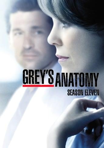 A Anatomia de Grey 11ª Temporada - Poster