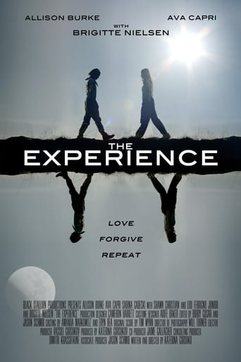 Poster of The Experience