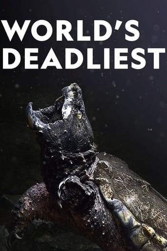 Die gefährlichsten Raubtiere der Welt