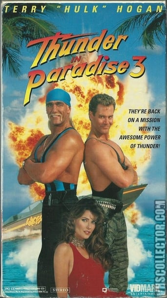 Poster of Thunder in Paradise 3