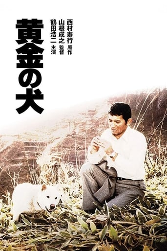 Poster of Dog of Fortune