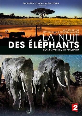 Poster of La nuit des éléphants